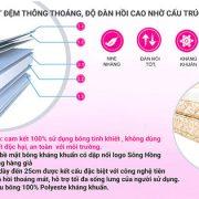 đệm Sông Hồng siêu nảy bông tinh khiết kháng khuẩn