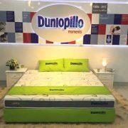 NPP nệm cao su Dunlopillo đến từ Anh Quốc