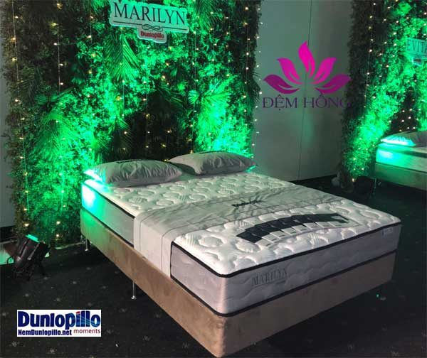 Địa chỉ cung cấp đệm lò xo Marilyn Dunlopillo Châu Âu